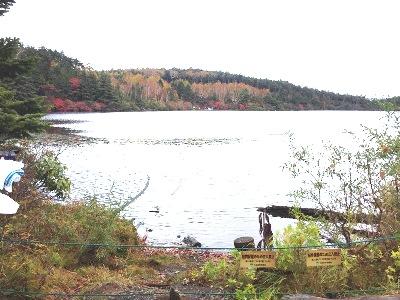 白駒池湖畔
