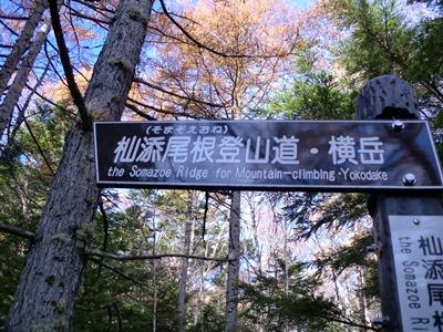 横岳登山口